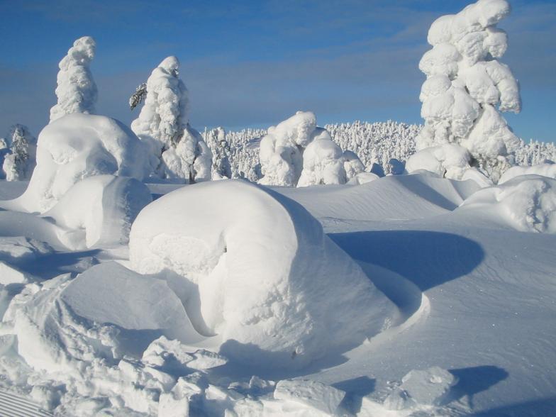 Sammaltunturin talvimaisema